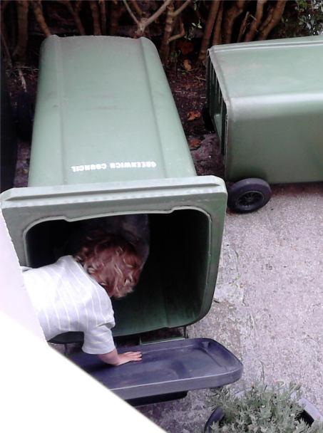 enfant joue dans la poubelle